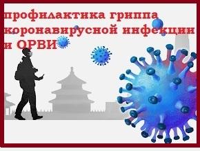 Профилактика гриппа коронавирусной инфекции и ОРВИ